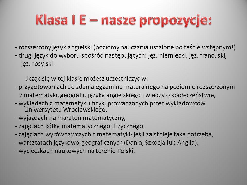 Klasa I E – nasze propozycje: