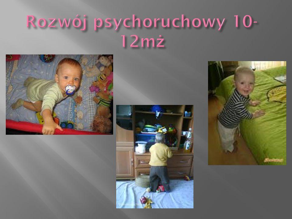 Rozwój psychoruchowy 10-12mż