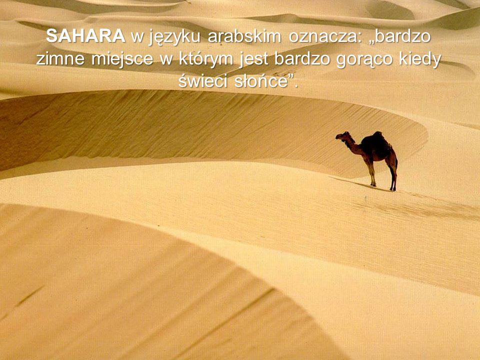 """SAHARA w języku arabskim oznacza: """"bardzo zimne miejsce w którym jest bardzo gorąco kiedy świeci słońce ."""
