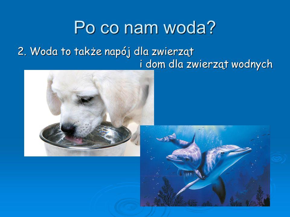 Po co nam woda 2. Woda to także napój dla zwierząt