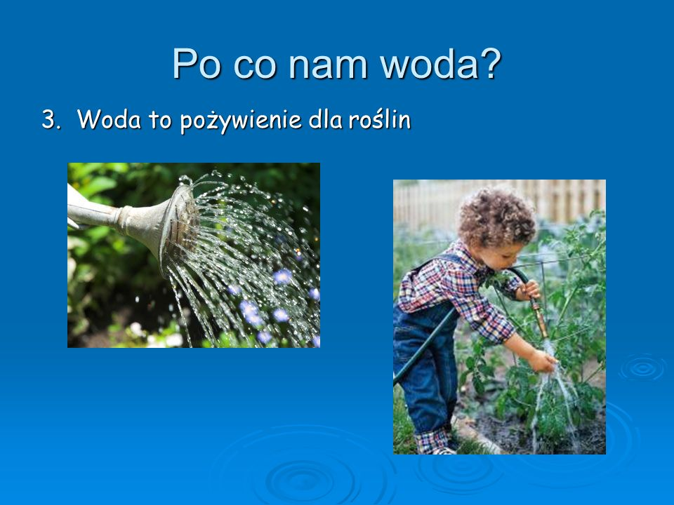 Po co nam woda 3. Woda to pożywienie dla roślin