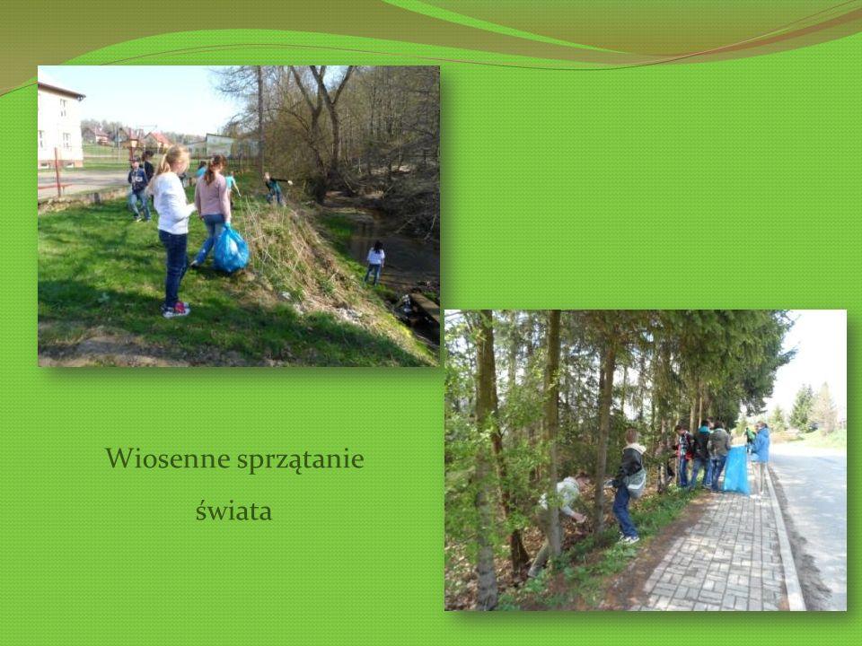 Wiosenne sprzątanie świata