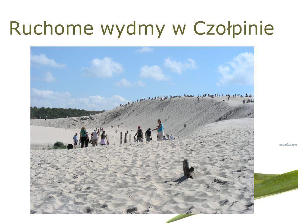 Ruchome wydmy w Czołpinie