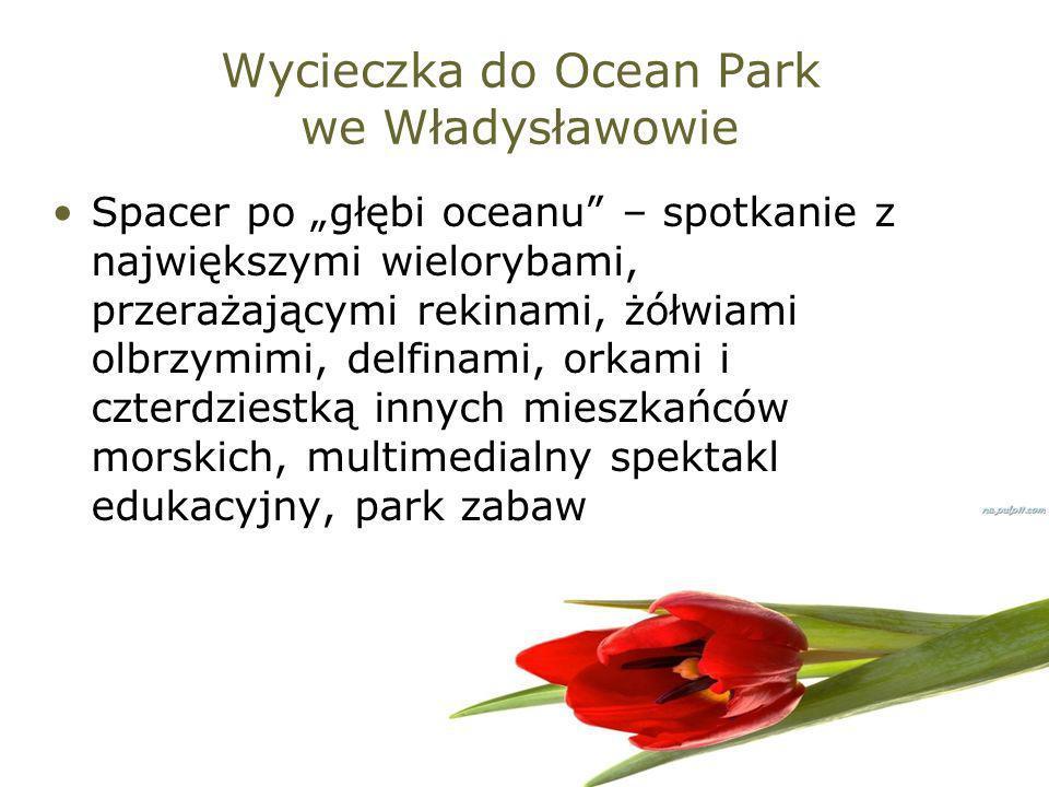 Wycieczka do Ocean Park we Władysławowie