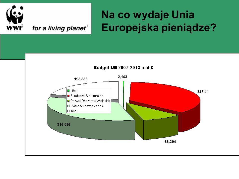 Na co wydaje Unia Europejska pieniądze