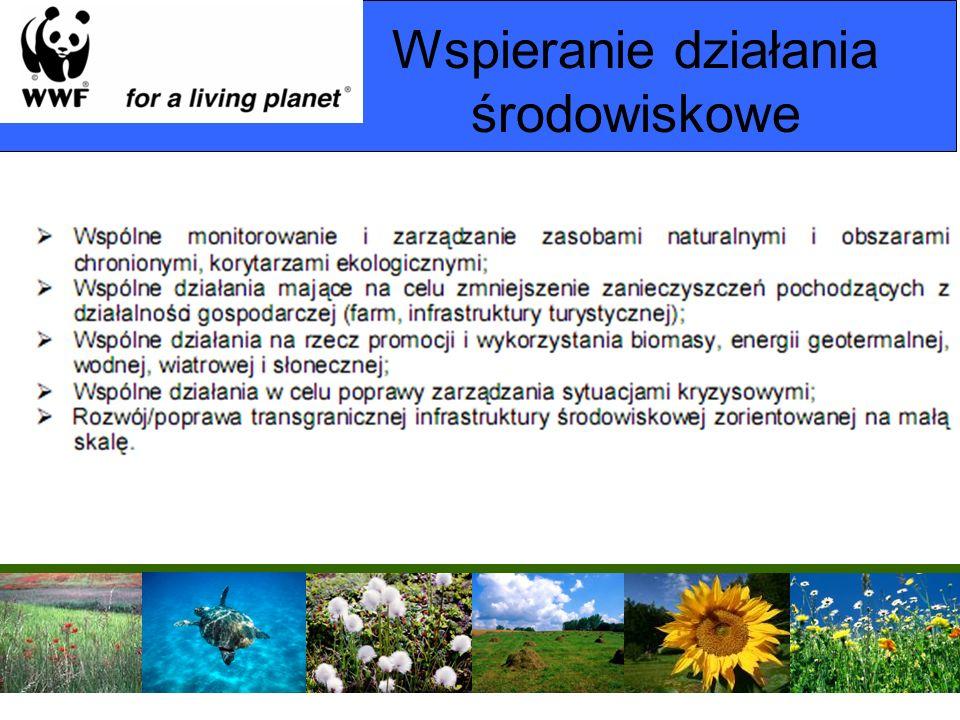 Wspieranie działania środowiskowe