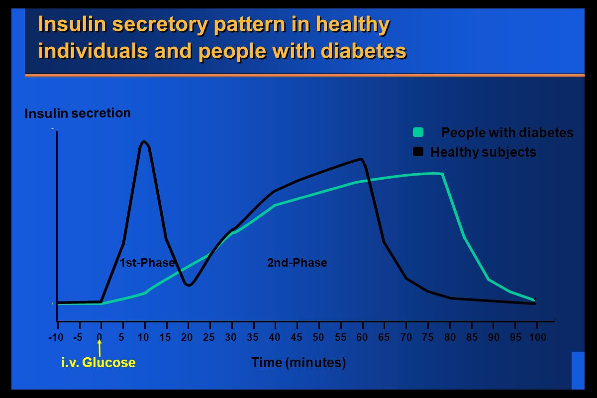 Insulin secretory pattern in healthy individuals and people with diabetes