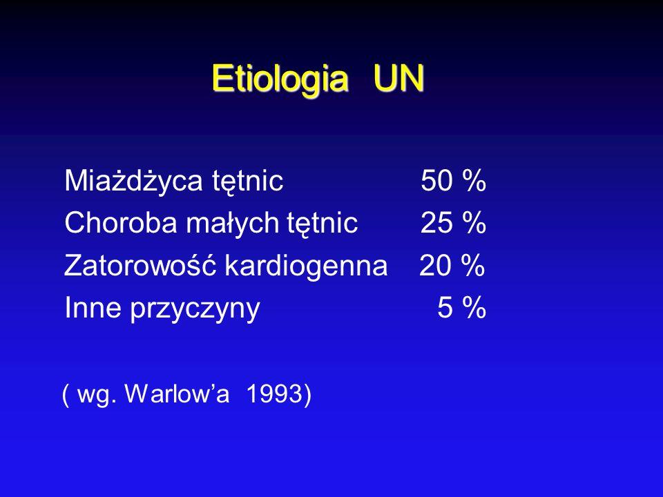 Etiologia UN Miażdżyca tętnic 50 % Choroba małych tętnic 25 %