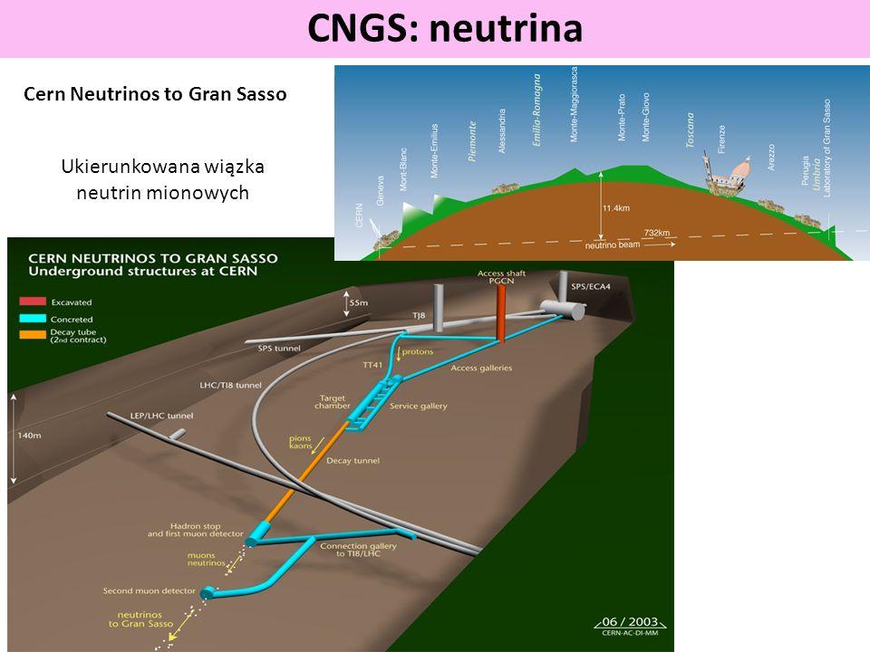 Ukierunkowana wiązka neutrin mionowych