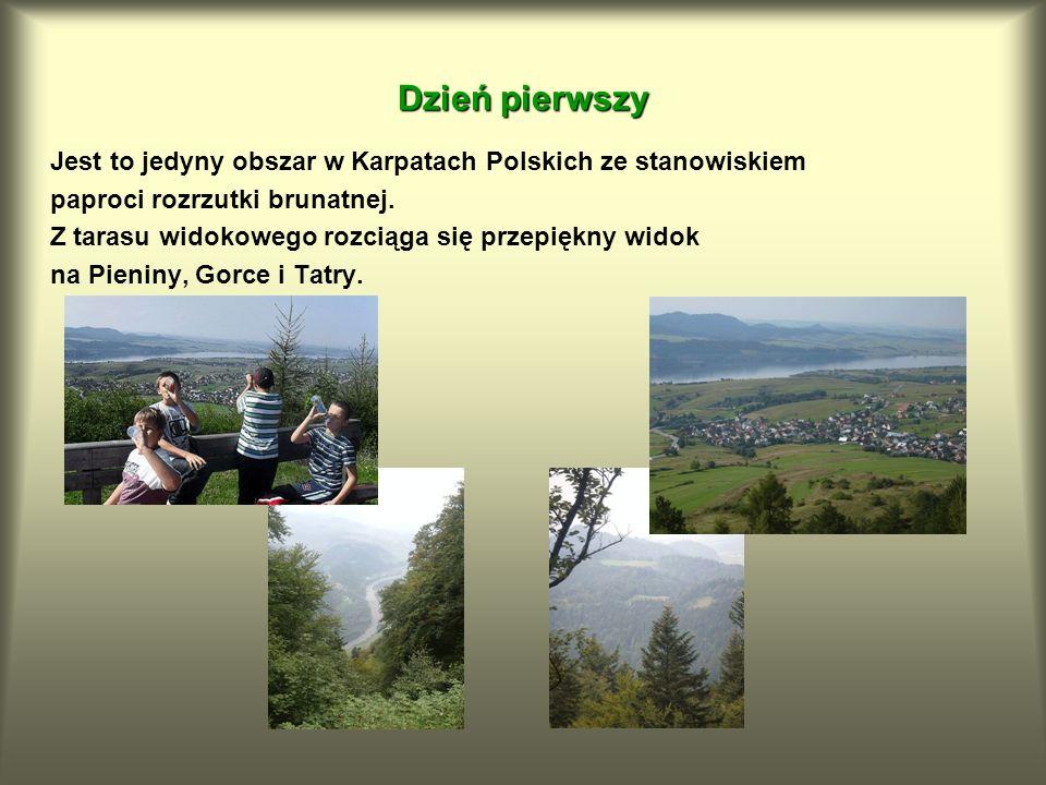 Dzień pierwszy Jest to jedyny obszar w Karpatach Polskich ze stanowiskiem. paproci rozrzutki brunatnej.