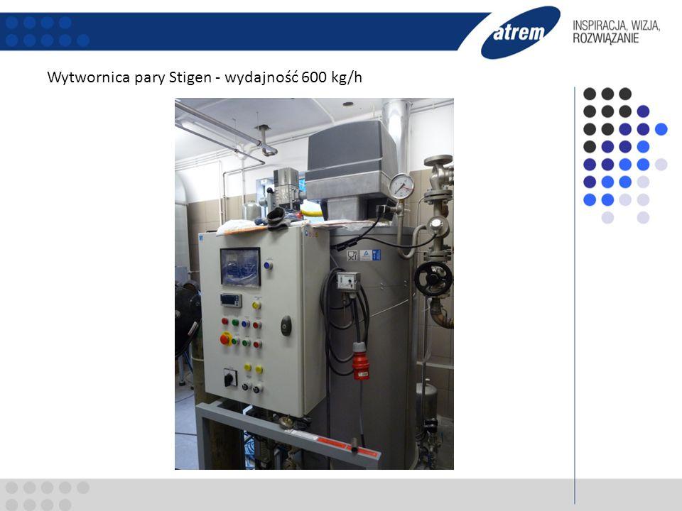 Wytwornica pary Stigen - wydajność 600 kg/h