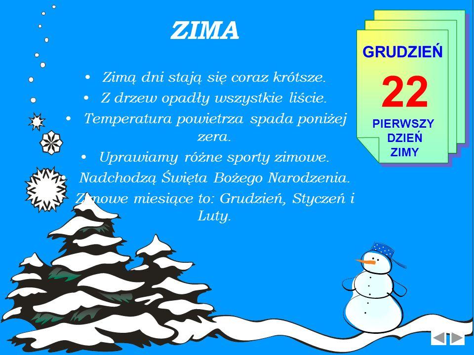 22 ZIMA GRUDZIEŃ Zimą dni stają się coraz krótsze.