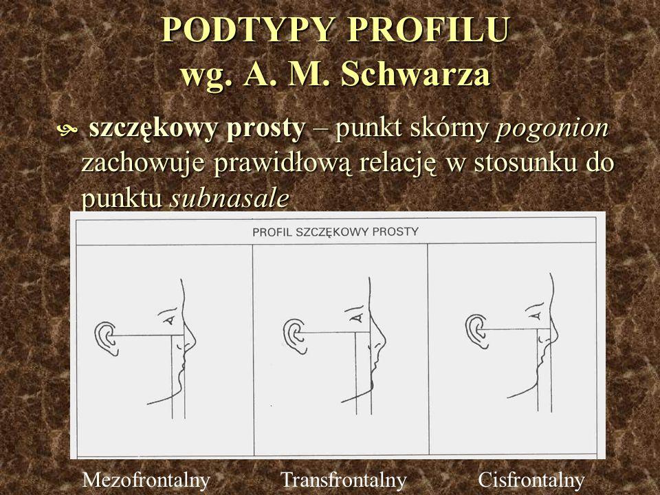 PODTYPY PROFILU wg. A. M. Schwarza