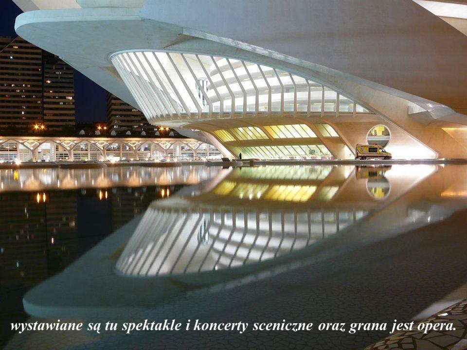 wystawiane są tu spektakle i koncerty sceniczne oraz grana jest opera.