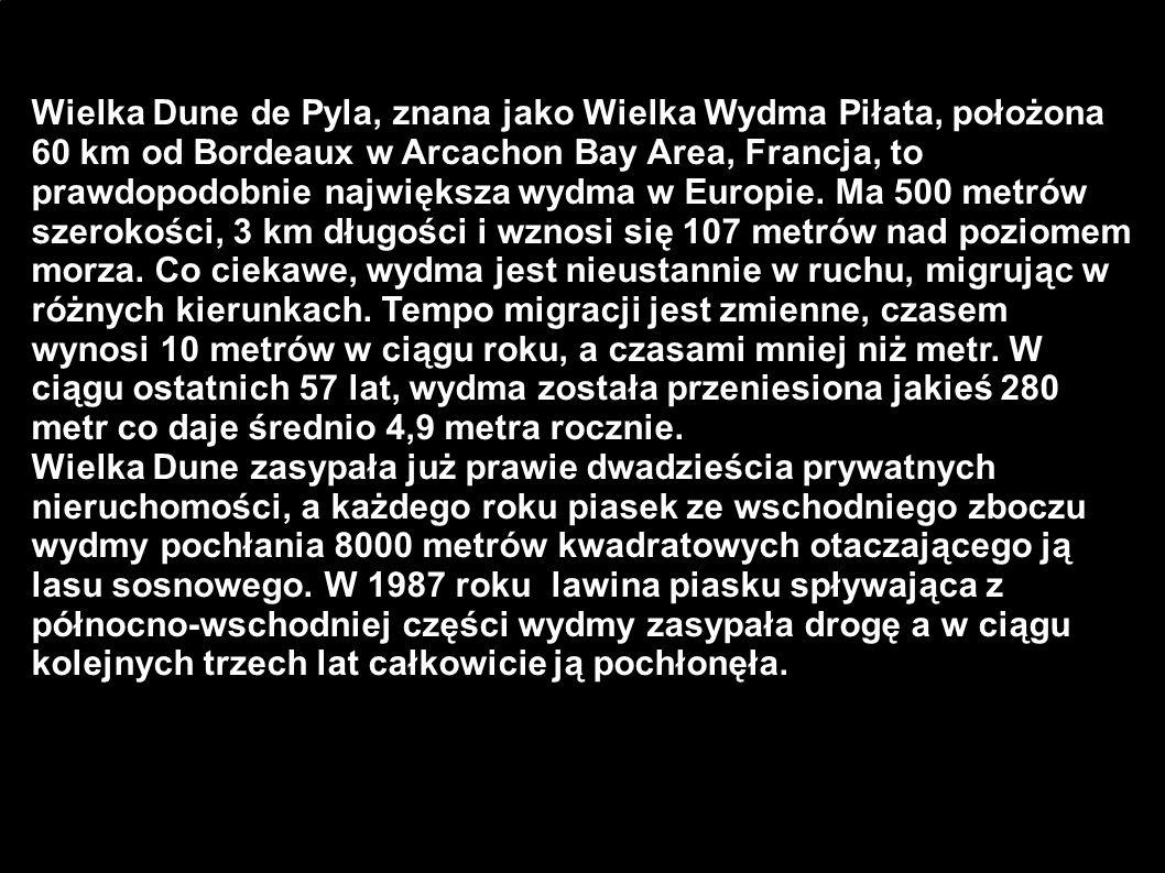 Wielka Dune de Pyla, znana jako Wielka Wydma Piłata, położona 60 km od Bordeaux w Arcachon Bay Area, Francja, to prawdopodobnie największa wydma w Europie. Ma 500 metrów szerokości, 3 km długości i wznosi się 107 metrów nad poziomem morza. Co ciekawe, wydma jest nieustannie w ruchu, migrując w różnych kierunkach. Tempo migracji jest zmienne, czasem wynosi 10 metrów w ciągu roku, a czasami mniej niż metr. W ciągu ostatnich 57 lat, wydma została przeniesiona jakieś 280 metr co daje średnio 4,9 metra rocznie.