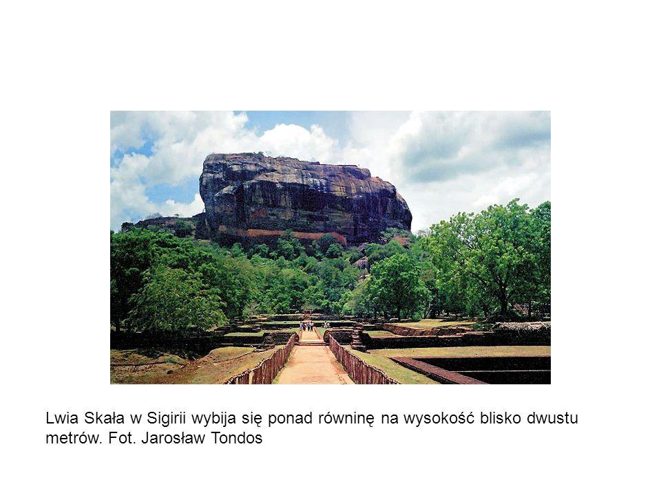 Lwia Skała w Sigirii wybija się ponad równinę na wysokość blisko dwustu metrów. Fot. Jarosław Tondos