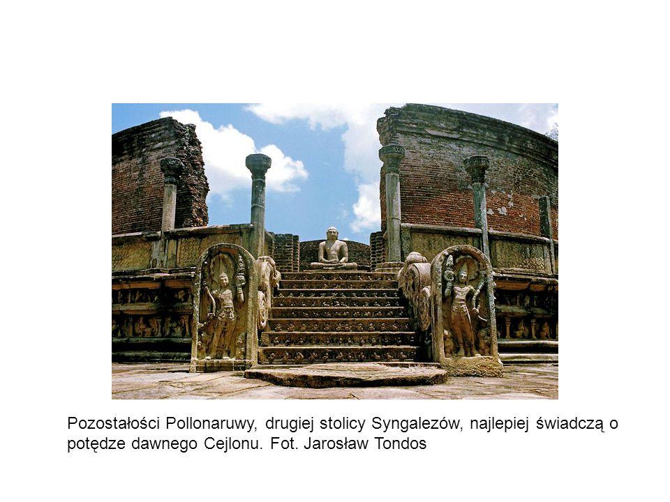 Pozostałości Pollonaruwy, drugiej stolicy Syngalezów, najlepiej świadczą o potędze dawnego Cejlonu.