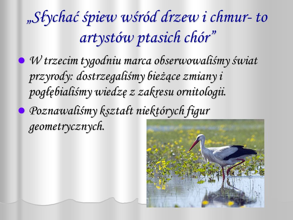 """""""Słychać śpiew wśród drzew i chmur- to artystów ptasich chór"""
