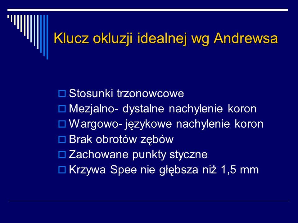 Klucz okluzji idealnej wg Andrewsa