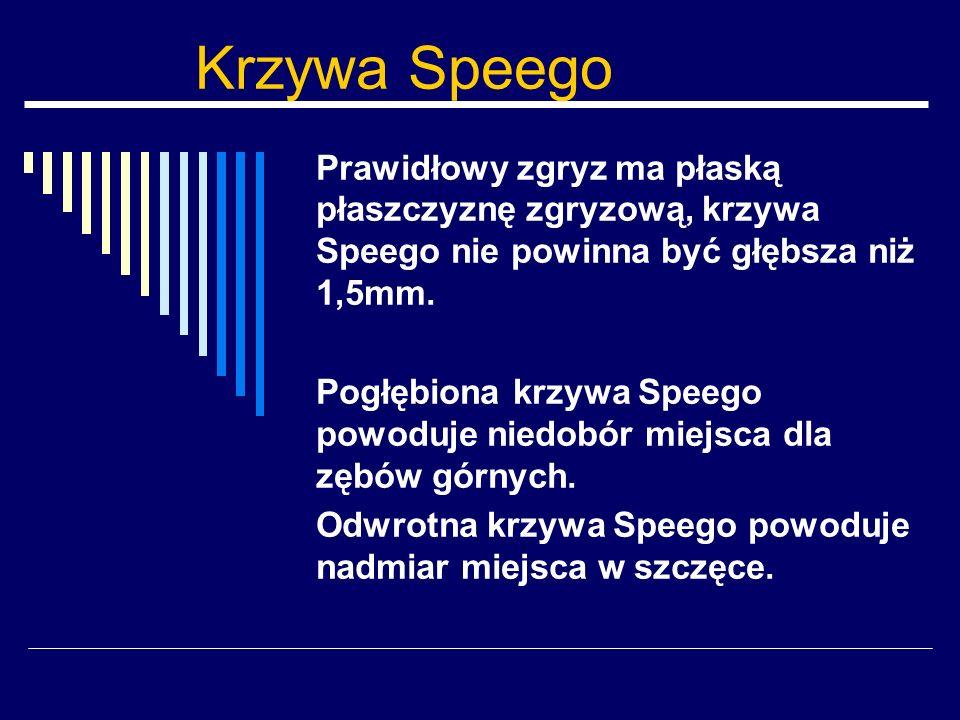 Krzywa Speego Prawidłowy zgryz ma płaską płaszczyznę zgryzową, krzywa Speego nie powinna być głębsza niż 1,5mm.