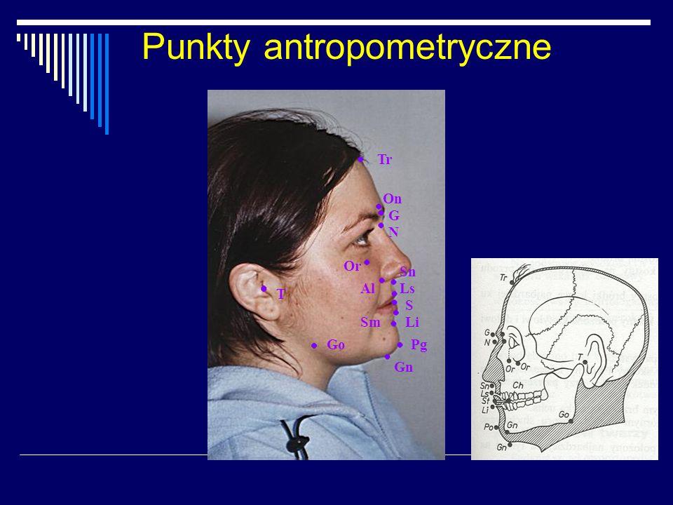 Punkty antropometryczne