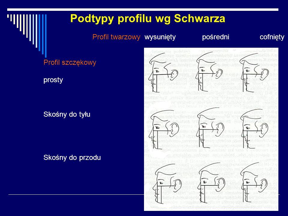 Podtypy profilu wg Schwarza