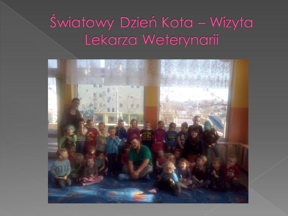 Światowy Dzień Kota – Wizyta Lekarza Weterynarii