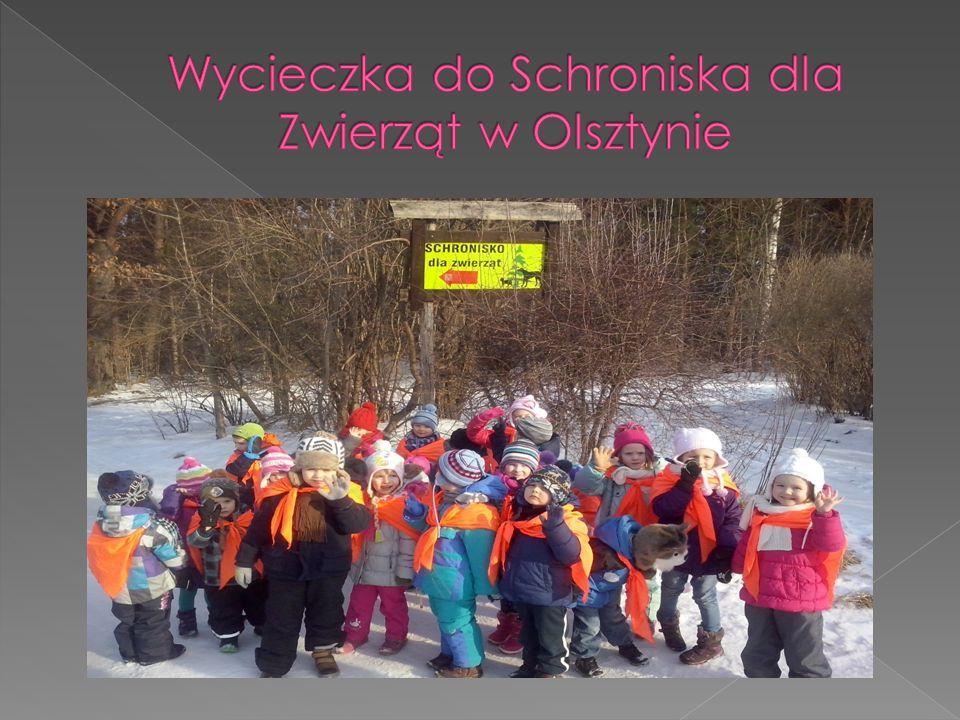 Wycieczka do Schroniska dla Zwierząt w Olsztynie