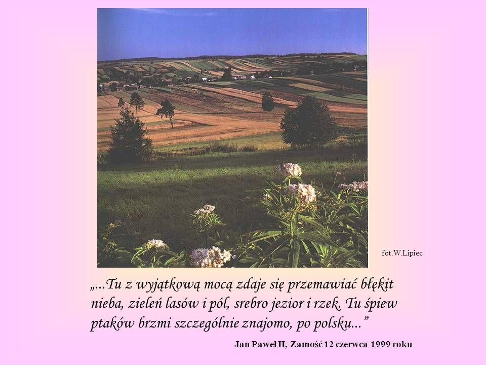 fot.W.Lipiec