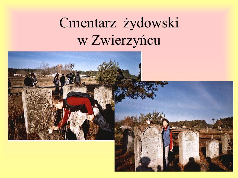 Cmentarz żydowski w Zwierzyńcu