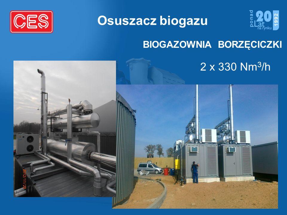 Osuszacz biogazu BIOGAZOWNIA BORZĘCICZKI 2 x 330 Nm3/h
