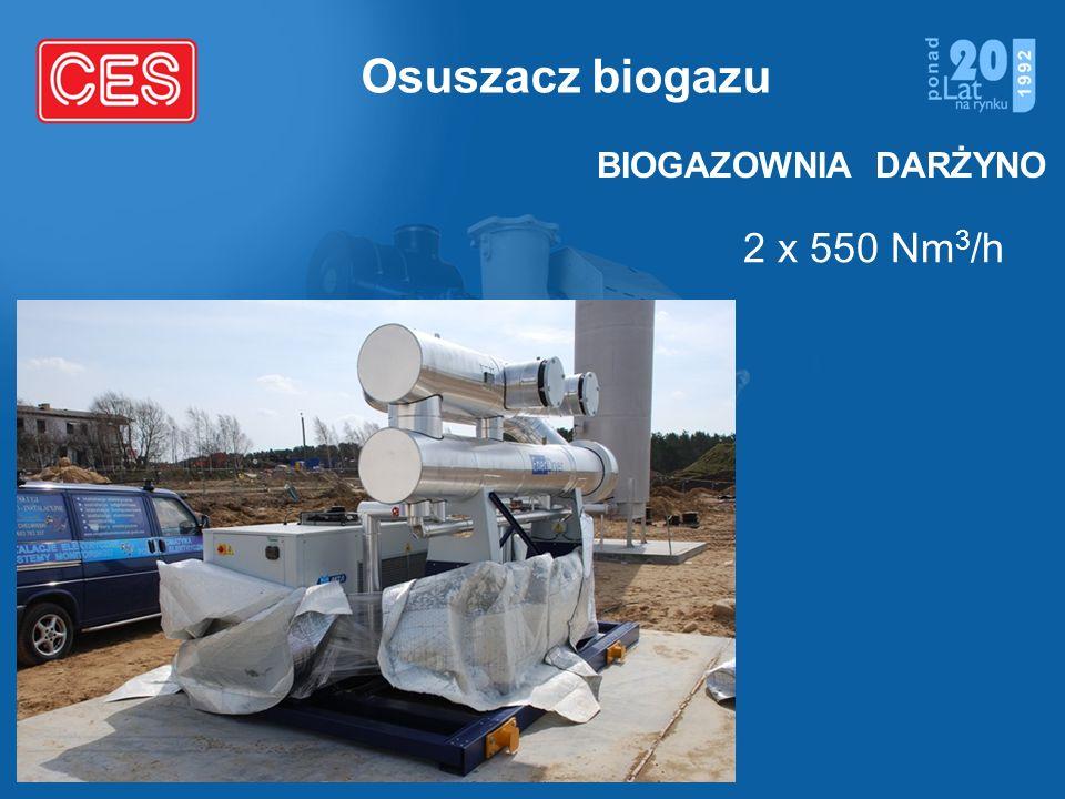 Osuszacz biogazu BIOGAZOWNIA DARŻYNO 2 x 550 Nm3/h
