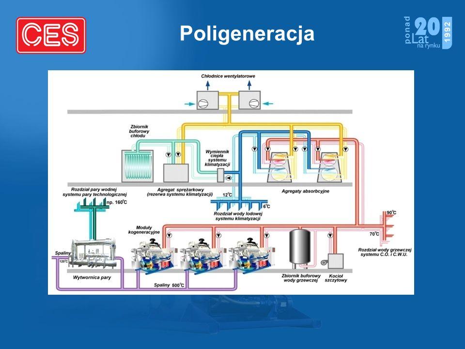 Poligeneracja