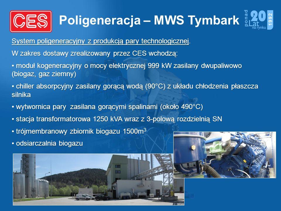 Poligeneracja – MWS Tymbark