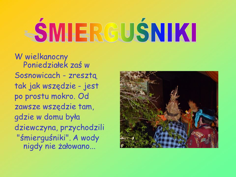 ŚMIERGUŚNIKI W wielkanocny Poniedziałek zaś w Sosnowicach - zresztą