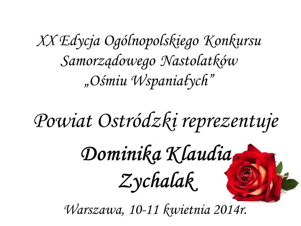 Powiat Ostródzki reprezentuje