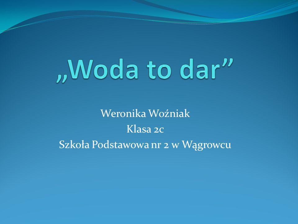 Weronika Woźniak Klasa 2c Szkoła Podstawowa nr 2 w Wągrowcu