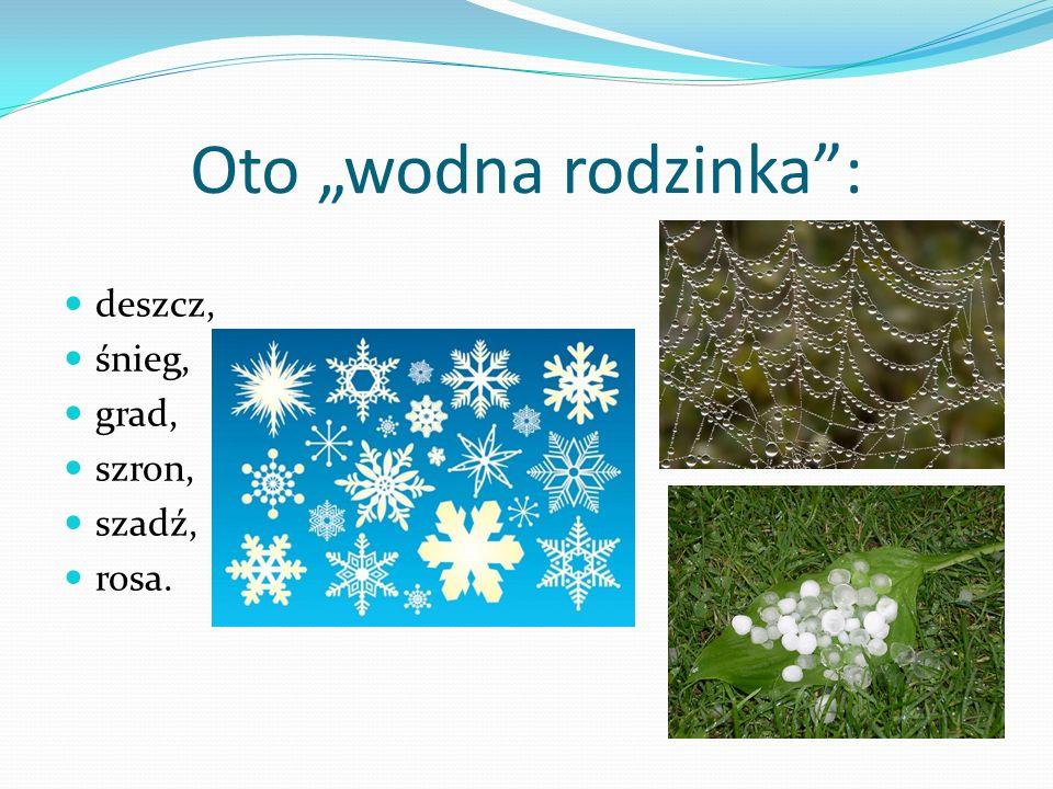 """Oto """"wodna rodzinka : deszcz, śnieg, grad, szron, szadź, rosa."""