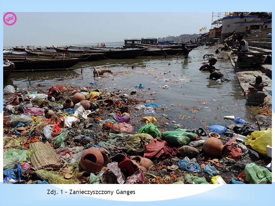 Zdj. 1 – Zanieczyszczony Ganges