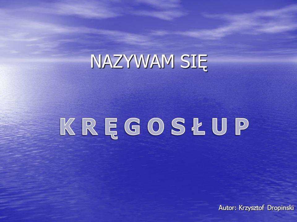 Autor: Krzysztof Dropinski