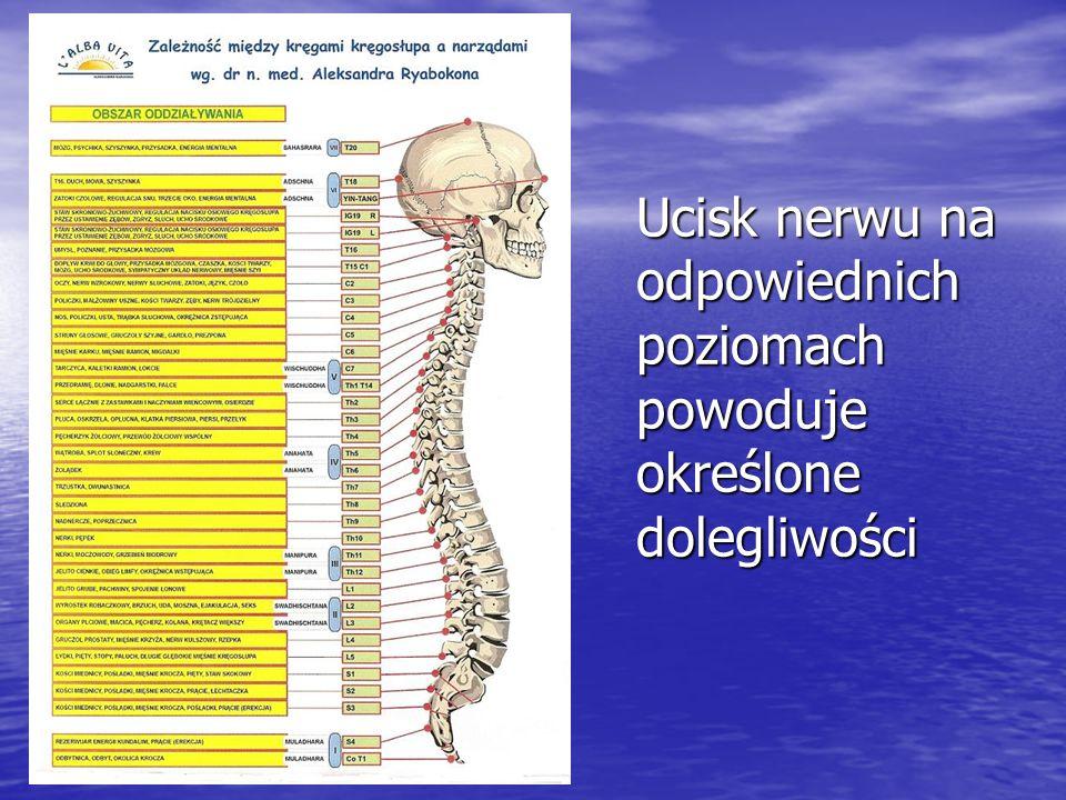 Ucisk nerwu na odpowiednich poziomach powoduje określone dolegliwości