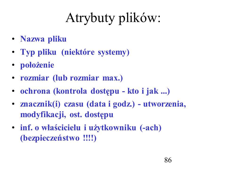 Atrybuty plików: Nazwa pliku Typ pliku (niektóre systemy) położenie