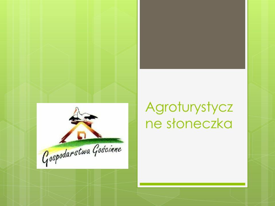 Agroturystyczne słoneczka