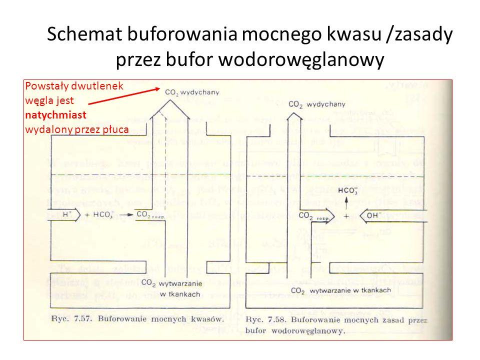 Schemat buforowania mocnego kwasu /zasady przez bufor wodorowęglanowy