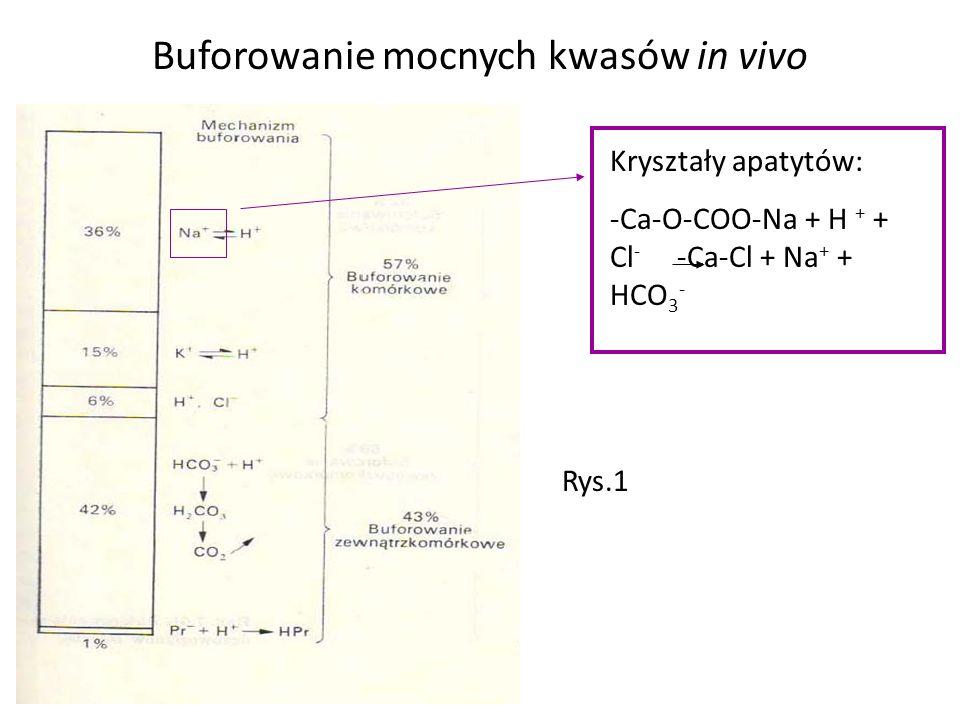 Buforowanie mocnych kwasów in vivo
