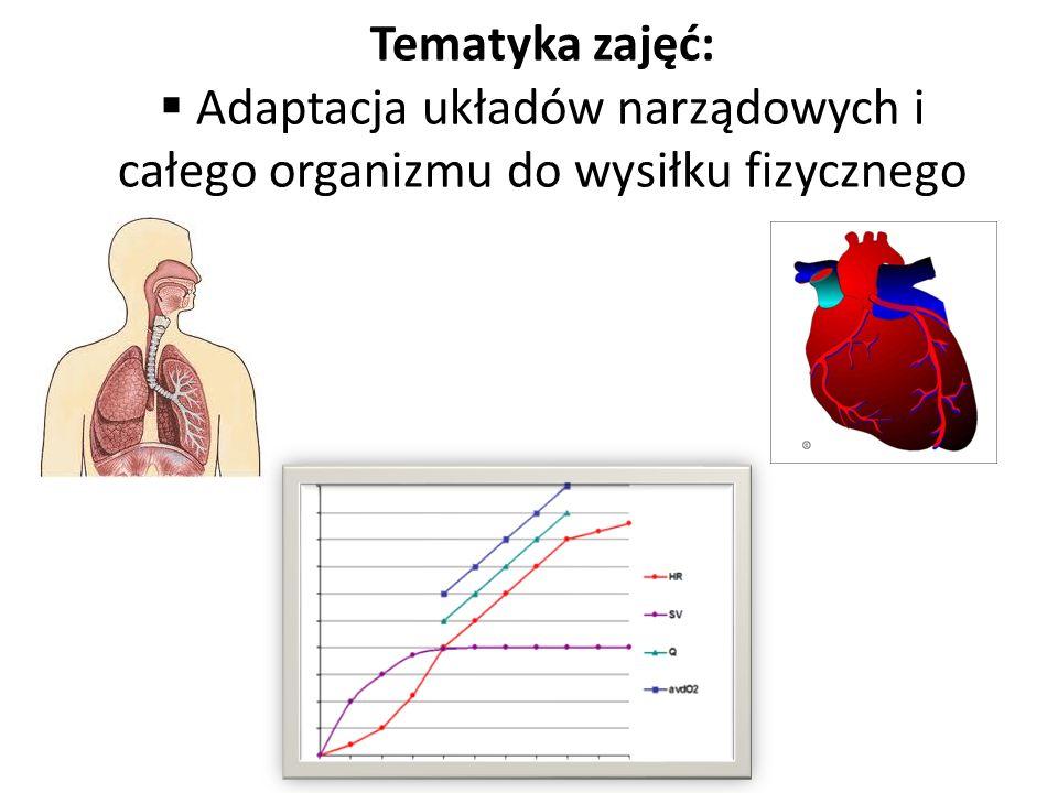 Adaptacja układów narządowych i całego organizmu do wysiłku fizycznego
