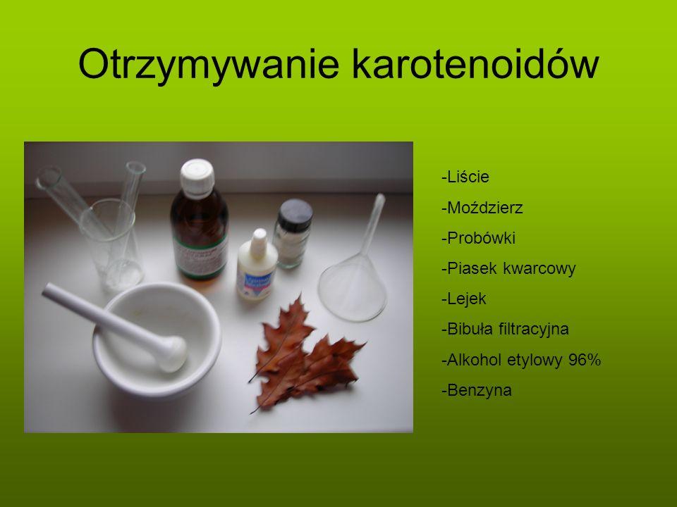 Otrzymywanie karotenoidów