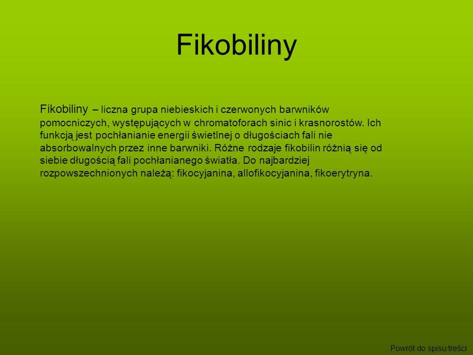 Fikobiliny