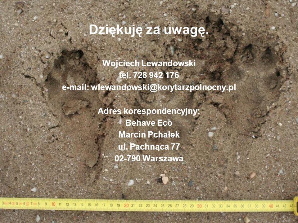 e-mail: wlewandowski@korytarzpolnocny.pl Adres korespondencyjny: