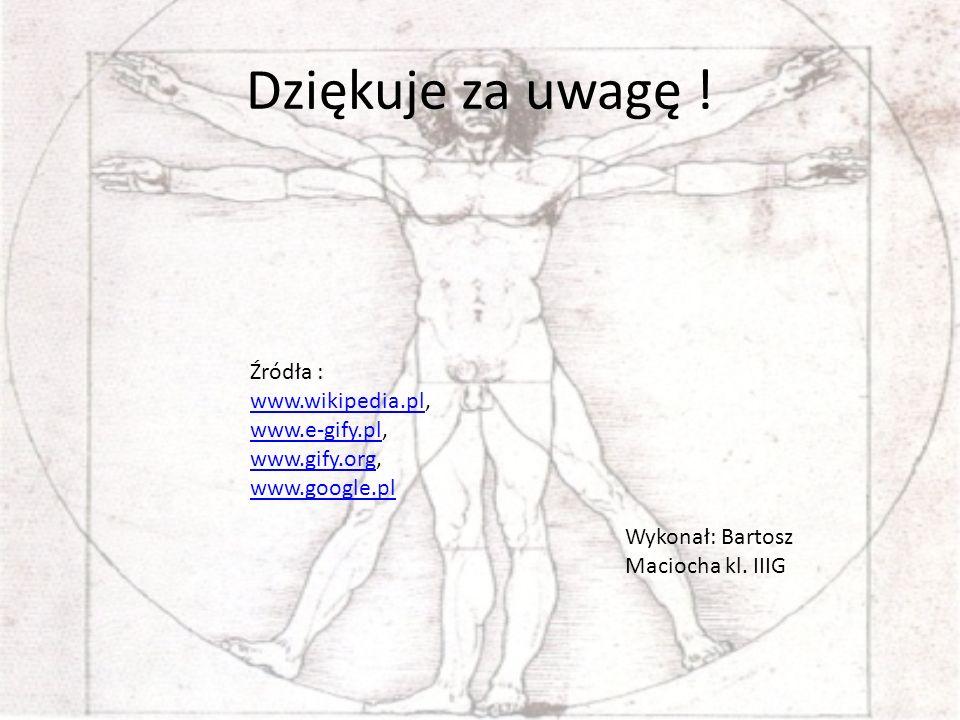 Dziękuje za uwagę ! Źródła : www.wikipedia.pl, www.e-gify.pl,